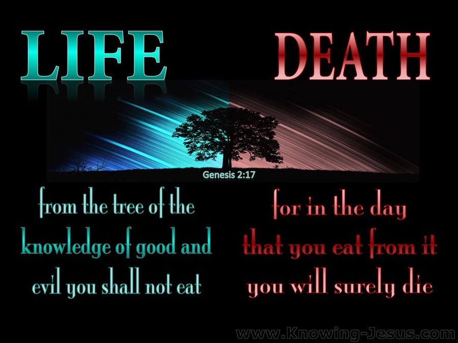 Genesis 2-17 Tree of Knowledge of Good and Evil aqua